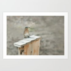 Build Your Nest Art Print