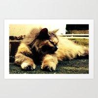 hemingway Art Prints featuring Hemingway Cat by Derek Fleener
