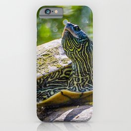 Turtle is the New Leopard Print iPhone Case