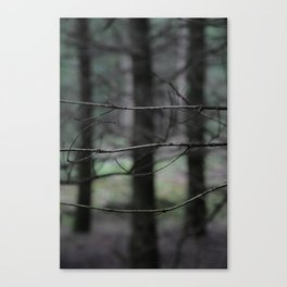 Clawing branches Canvas Print