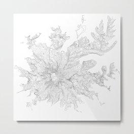 Mount Rainier, WA Contour Map In White Metal Print