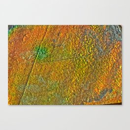Ammolite Canvas Print