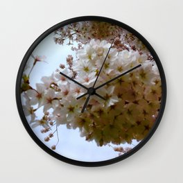 Cherry Blossom Beckons  Wall Clock