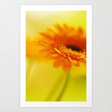 Orange Crush Art Print