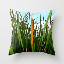 Bullrush  Throw Pillow
