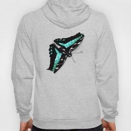 Papillon vert Hoody