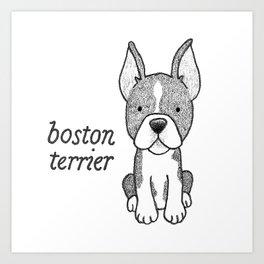 Dog Breeds: Boston Terrier Art Print