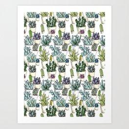 Tiny Cactus Succulents Cacti Art Print