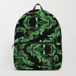 A M A Z O N Backpack