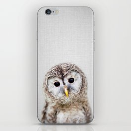 Baby Owl - Colorful iPhone Skin