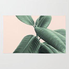 Ficus Elastica #25 #SummerVibes #foliage #decor #art #society6 Rug