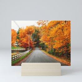 autumnal road in new england Mini Art Print