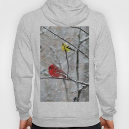 Goldfinch and Cardinal Hoody