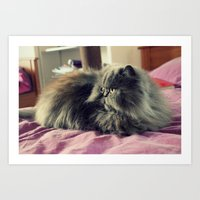 persian Art Prints featuring Persian by Astrid P