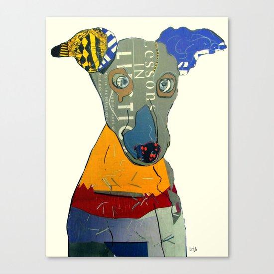 kacy (greyhound  Canvas Print