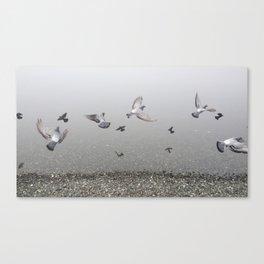 Foggy Lagoon  Canvas Print