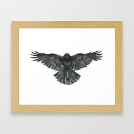Crow in Flight Framed Art Print