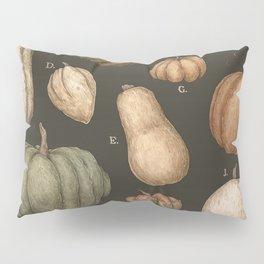 Pumpkins and Gourds Pillow Sham