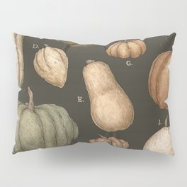 Pumpkins and Gourds Pillow Sham