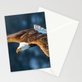 Marvelous Gracious American Bald Head Eagle Majestic Flying Gliding Through Air Close Up Ultra HD Stationery Cards