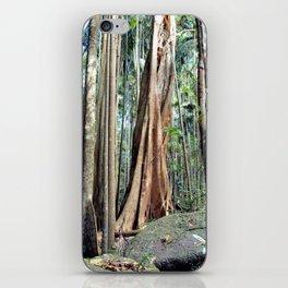 Curtis Falls Rainforest iPhone Skin