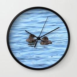 Baby loons Wall Clock