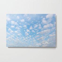 The bright blue sky in my backyard Metal Print