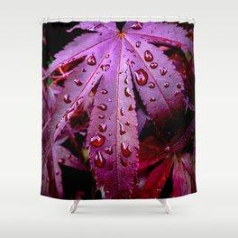 Lingering Rain Shower Curtain