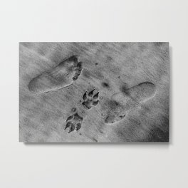 Friends in any direction Metal Print