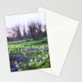 Late Winter Blooms Stationery Cards
