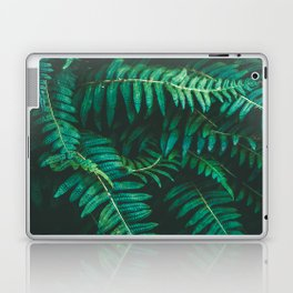 Ferns II Laptop & iPad Skin