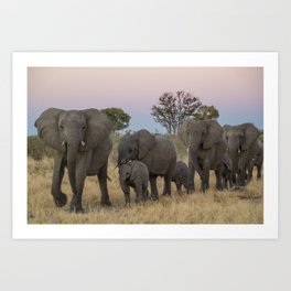 To the Watering Hole Art Print