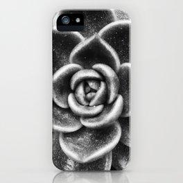 Succulent Symmetry iPhone Case