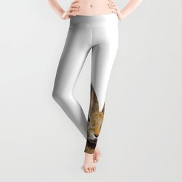 Bunny by Kathy Morton Stanion Leggings