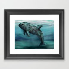 Vaquita  Framed Art Print