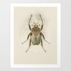 Beetle Geo Art Print
