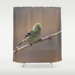 Early Spring Goldfinch Shower Curtain