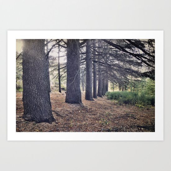 the forest of a thousand stories Art Print