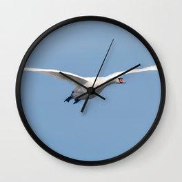 Mute Swan in flight blue sky (Cygnus olor) Wall Clock