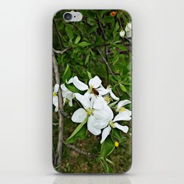 Collecting Pollen iPhone Skin