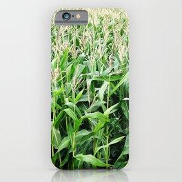 Corn -  Maize -  Crop -  Grow -  Agriculture -  Grain -  Food - Vintage illustration. Retro décor. iPhone Case