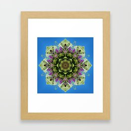 Intricate floral kaleidoscope - Vebena, Dichondra leaves with blue sky Framed Art Print