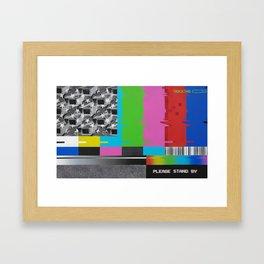 CAPTIVE AMERICA Framed Art Print