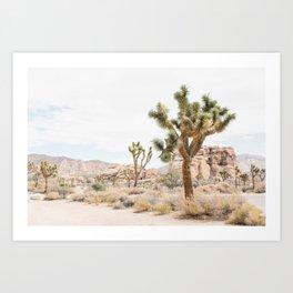 joshua tree boho cactus desert wall art landscape photography print Art Print