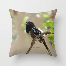 Spotted Towhee Scopes the Oak Grove Throw Pillow