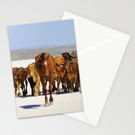 Pony leading the mob home Stationery Cards
