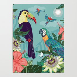 Toucan and Parrot Poster
