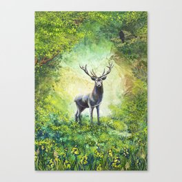 Stag In A Forest Canvas Print