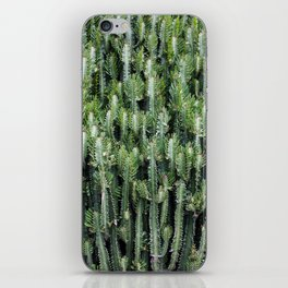 Candelabra Cactus Tree iPhone Skin