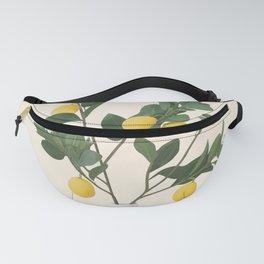 Lemon Branches II Fanny Pack